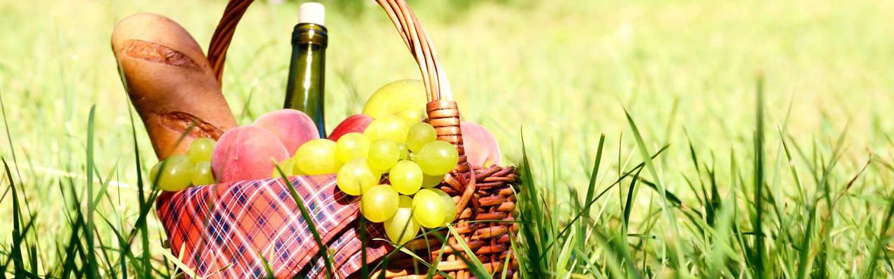 panier de pique nique avec bouteille de vin dans l'herbe, séjour Colmar, Le Marechal